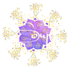 7eBloom_purple_pastell_4.1_WZ